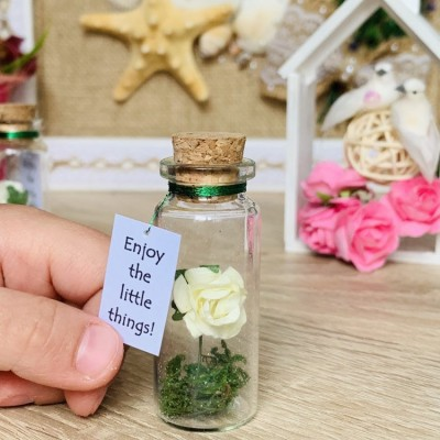 Forever Rose Girlfriend gift, Miniature gift for her, Beauty and the beast Enchanted Rose Message in a Bottle, Preserved rose
