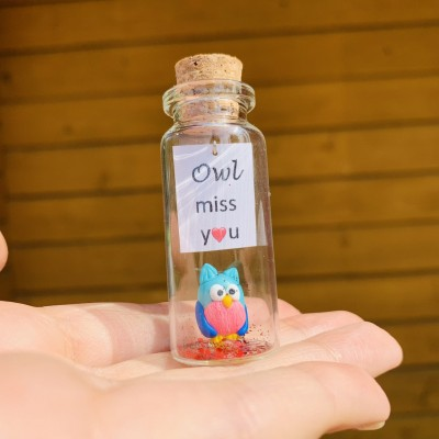 Long Distance Relationship Gift Owl Bottle Boyfriend Gift Cute Girlfriend Gift Personalized Christmas Valentines Birthday Gift Miss You