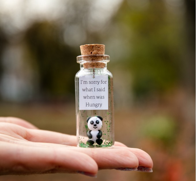 You are special Panda bear gift for her Animal lovers gift Unique gift for daughter Granddaughter present Gift for niece Wish jar